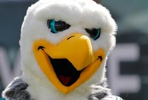 Swoop the Eagle
