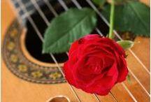 Acoustic Guitar Weddings