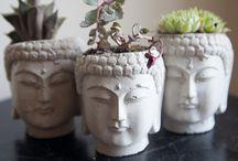 Buddha planters