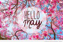 Hallo may beautyful ❤️❤️❤️