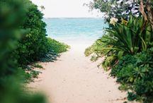 Moře, palmy, slunce, písek