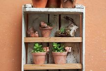 Jardimvertical plantas