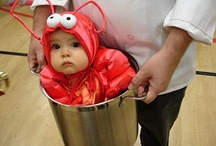 Funny Baby Pics / by Baby Pics