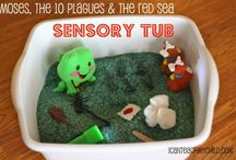 Sensory Concerns and/ or Helps