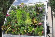 ideas jardín y terraza