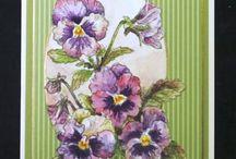 Cards - Floral, Pansies