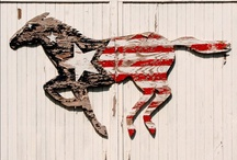 Americana craft inspiration / by Anne Anderson
