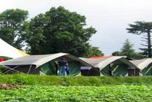 Kanatal Dhanaulti Camp / Kanatal Dhanaulti Camp offers you best camping in dhanaulti kanatal with all adventure activities at 8400ft on mussoorie chamba highway. http://www.dhanaultikanatalcamp.in/