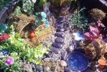 Fairy Gardens / by Debbie Church