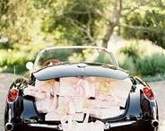 Dream wedding / by Molly Donohue