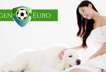 Agen Judi Online Euro 2016
