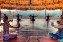Mexico Yoga Retreats