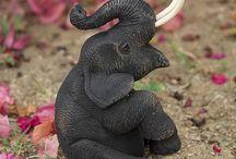 elephant / lovely ……
