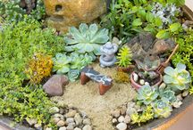 Fairy Gardens / Fairy garden ideas and inspiration. Anything that will be great in a fairy garden. Fairies!!