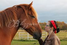 My Dream - My horse / My horse, my life. He is 12 years old finnishhorse gelding, wonderful gentleman !