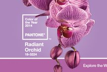 Pantone 2014 Color of the Year: Radiant Orchid / Pantone's 2014 Color of the Year is Radiant Orchid...here are some of our inspiration pieces for this!!!