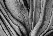Visual Elements-Texture