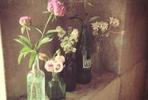 Pretty Flowers / Floristry