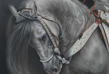 Horse Portraits from Art by Karie-Ann / Pastel paintings of horses by Karie-Ann Cooper