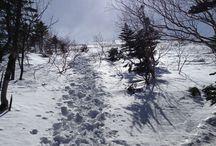 trek / 野山の風景