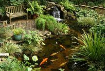 Water Feature Cottage Garden