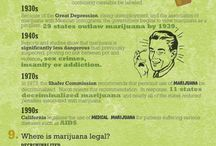 herb mary / medical, recreational and industrial cannabis