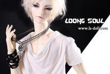 QingLi Limited(80sets) 62cm boy body / about - Fox - QingLi Limited(80sets)