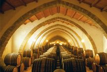 Wine Experience West Sicily / Here we are! Do you want some wine? Sicily produces some of the most delicious italian wines. During this tour you will discover the vineyards in West Sicily visiting charming cities and drinking top quality wine.