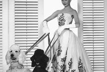 FASHION MOMENT / Epic. Timeless. Perfect Styling