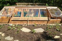 Green House Ideas