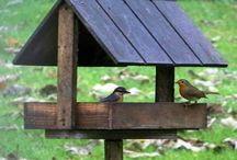 Mangeoir à oiseaux