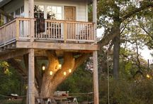 tree house ideas / by Connie Olmstead