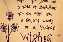 imagination is wisdom / my favorite quotes