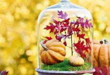 Jesień wokół