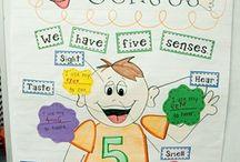 Science: 5 Senses
