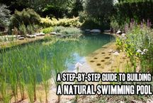 Como construir uma Piscina Natural