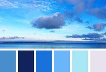 colors pallete