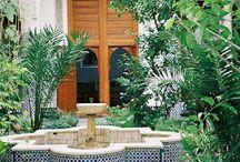 eksoottisia puutarhoja