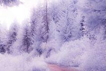 krajobrazy zimą--winter landscapes