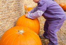 Pumpkins and More / Fun ideas to celebrate the fall holidays