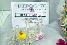 Competition Work / Bespoke Bridal Pieces Produced for Competition to Showcase La-Fleurs Work.