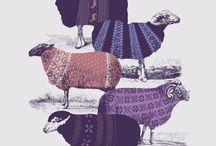 Love sheep!