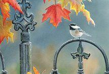 Otoño / Autumn / automne
