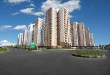 Real estate companies in Noida