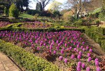 Gardens at Raithwaite Estate