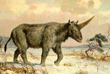 Antique Unicorn