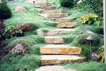 Side hill