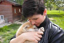 I  dogs  / A kutya már nem állat, még nem ember. (Csányi Vilmos)