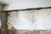Fungus mold wall Damage