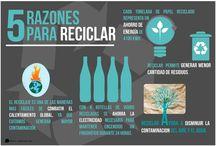 5 Razones para reciclar / Infografía
